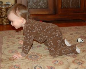 Simon Crawling